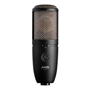 P420 - Black - High-performance dual-capsule true condenser microphone - Hero